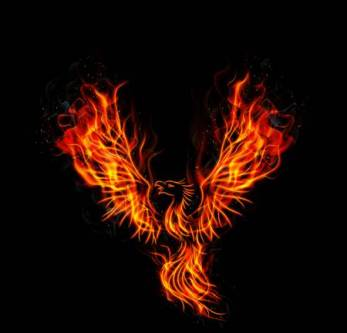 48052412-stock-vector-illustration-of-fire-burning-phoenix-bird-with-black-background